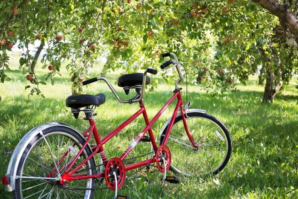 What is a tandem bike? Tandem comfort bike in field