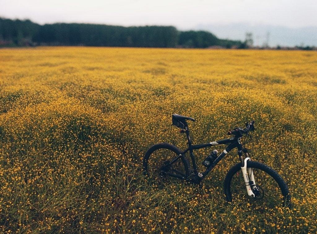 benefits of a hardtail bike