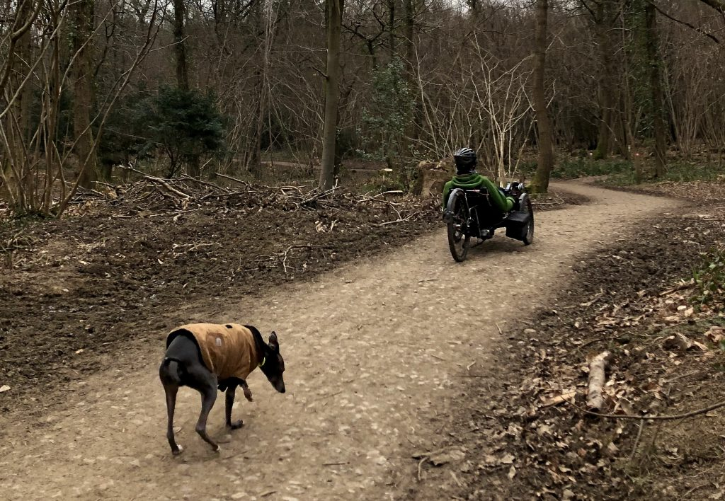 man riding a tadpole trike in forest with dog