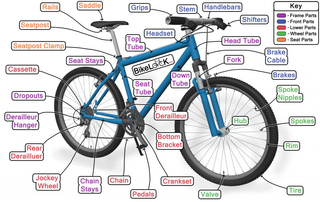 A diagram showing the parts of a bike for learning about bicycle anatomy